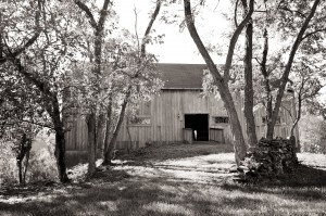 black and white photo of barn and trees at combsberry inn