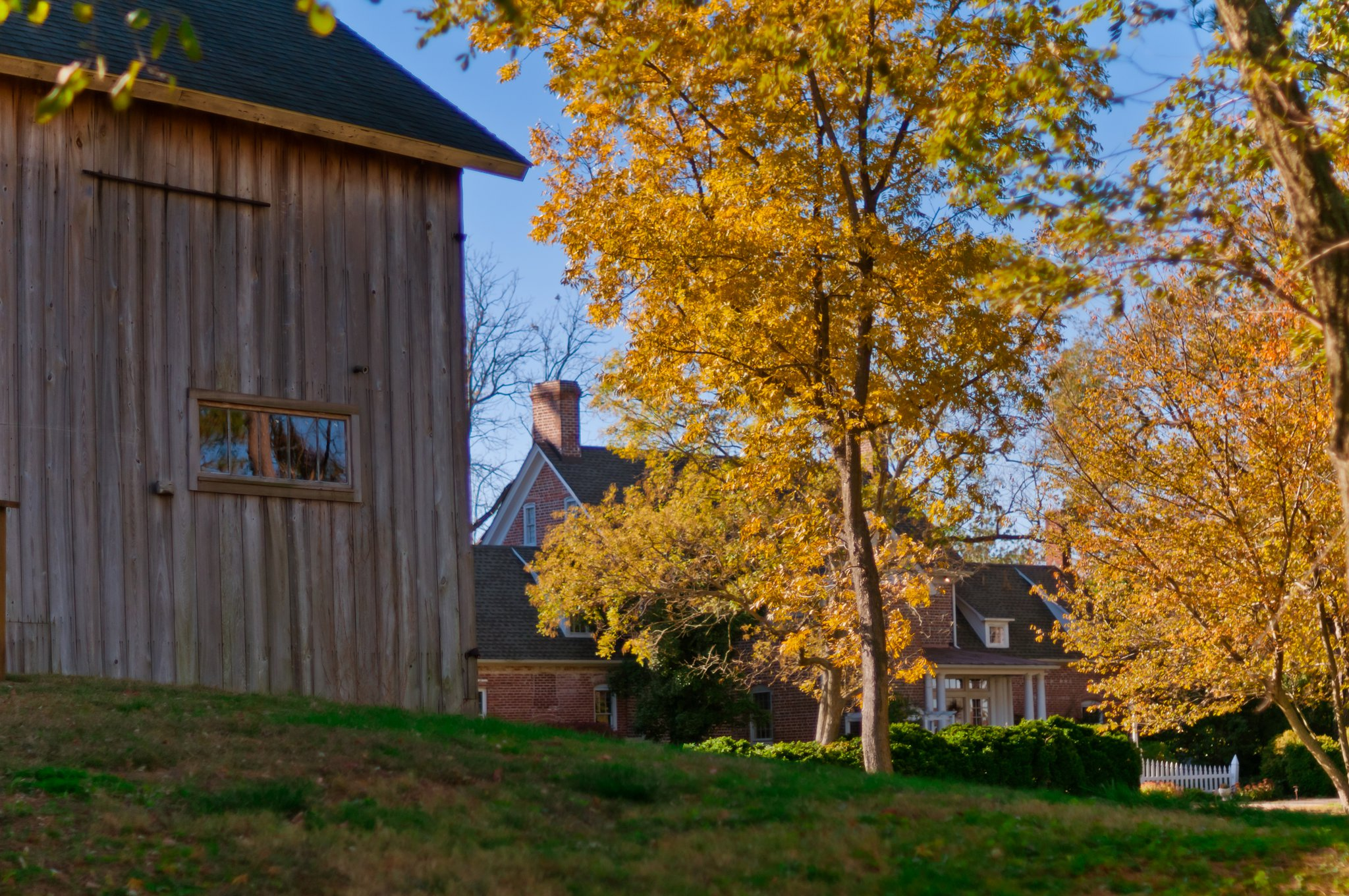 barn at combsberry inn md with trees and yellow fall leaves