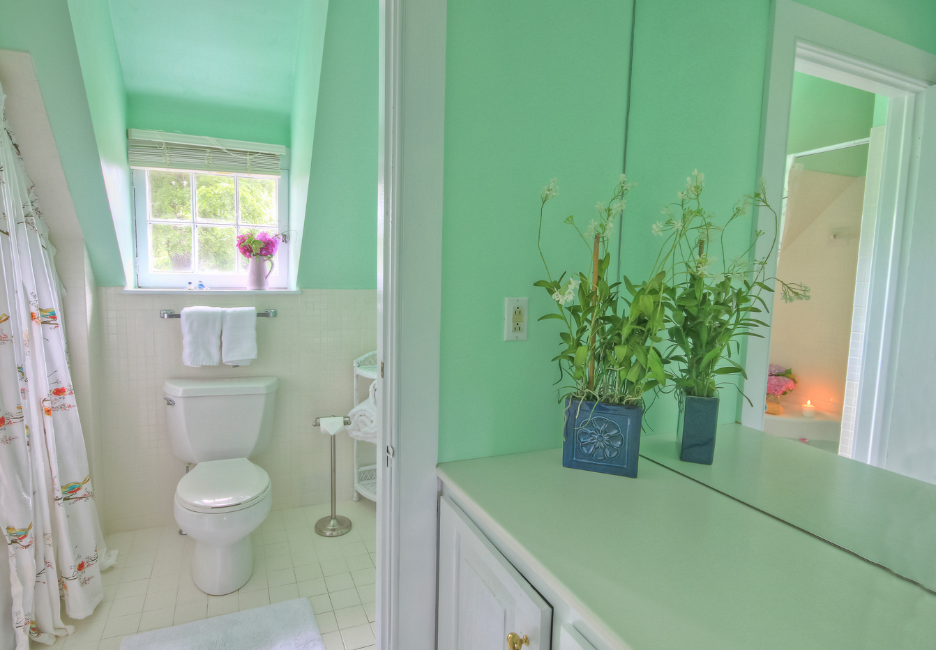 partial vanity view in bathroom with toilet and shower in cottage