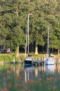 sailboats docked at pier on oxford river maryland