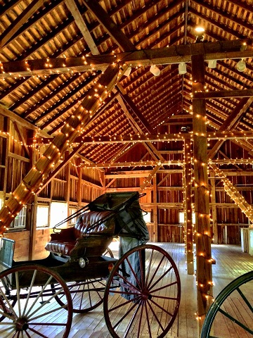 buggys in barn at combsberry inn decorated with string lights
