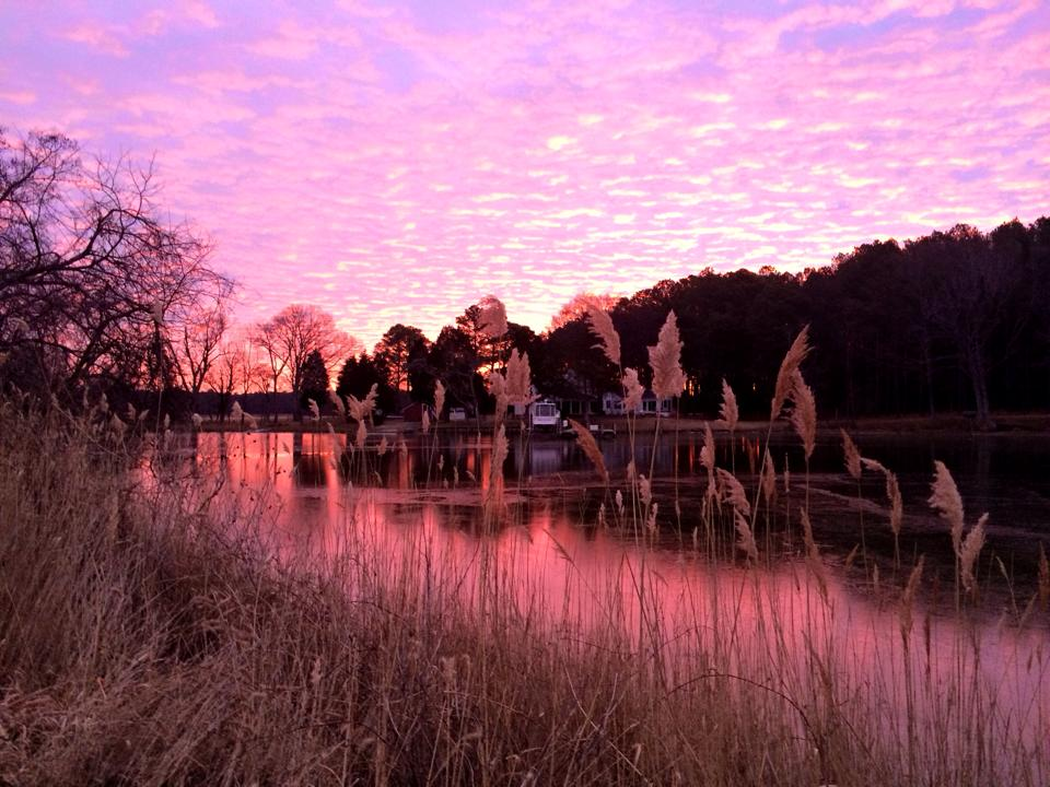 pink sky sunrise over water combsberry inn oxford md