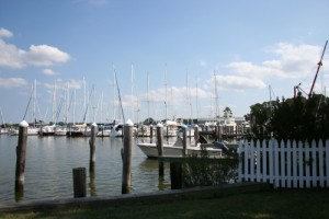 marina with boats in oxford maryland