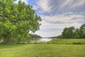 green grass and large lush tree by water at combsberry inn oxford md